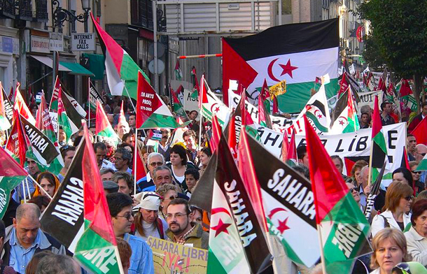 SahrawiProtest