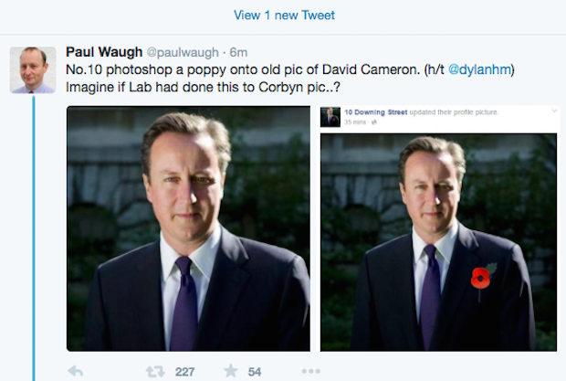 Cameron phtoshopped poppy