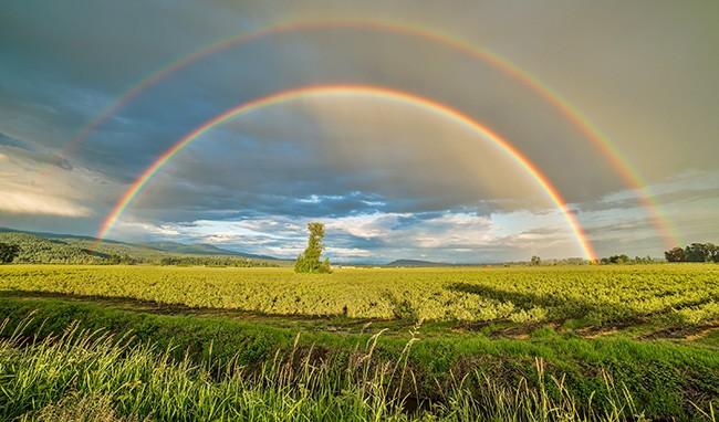 pg12-rainbow