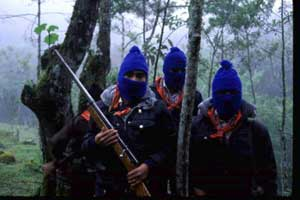 Zapatista National Liberation Army
